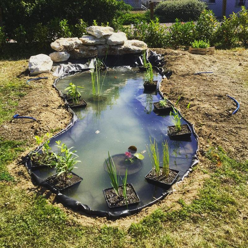 création bassin (1)