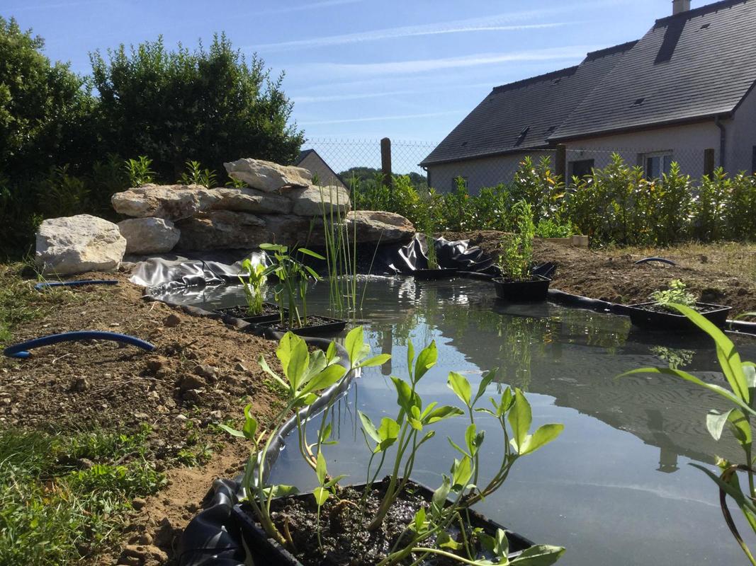 création bassin (2)
