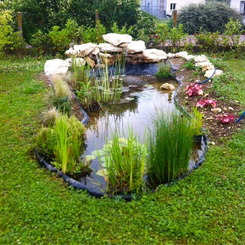 création bassin (3)