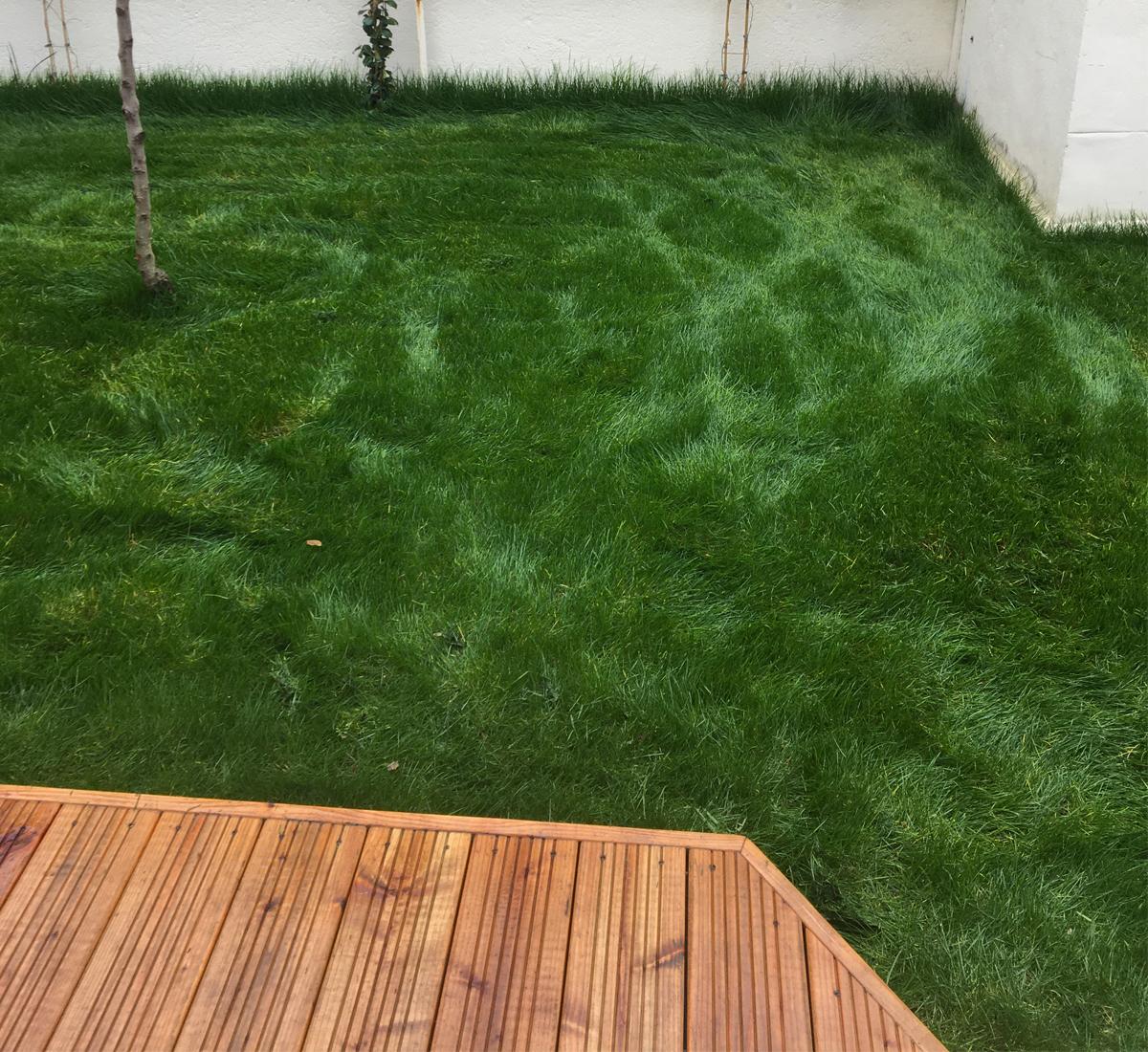 création terrasse jardin