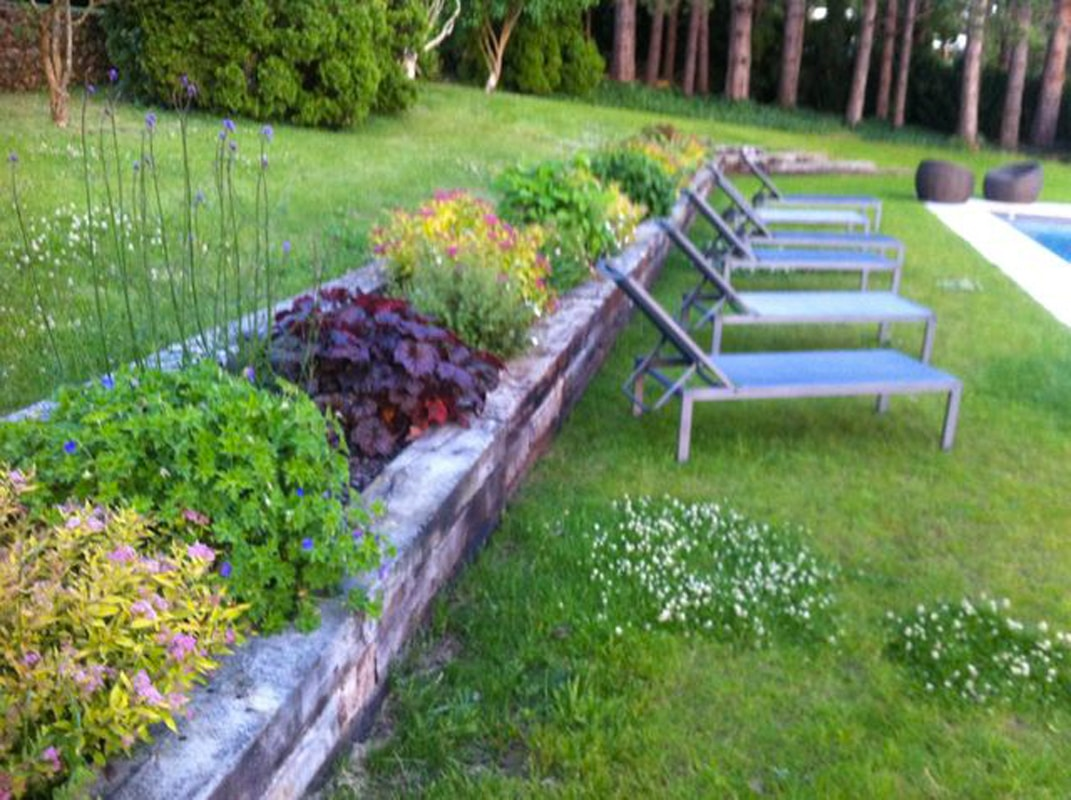 création jardin (2)